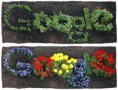 جوجل تحتفل بيوم الأرض العالمي