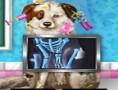 لعبة علاج الكلب المصاب بحادث سير